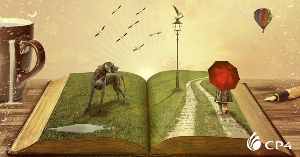 Livros sobre viagem completam sua biblioteca